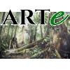 Lucas Kueh - Tropical Rainforest